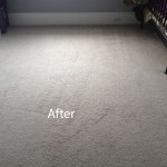 Cranberry Juice Stain Removal Puyallup B