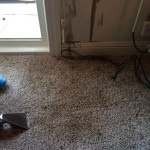 Oil-Stain-Removal-After-Puyallup