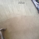 Puyallup-Carpet-Cleaning-Company