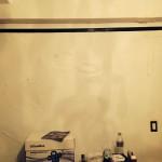 Puyallup-mold-damage