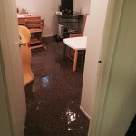 Puyallupoffice-room-flood-damage-repair