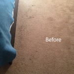 ink stain removal Puyallup-A