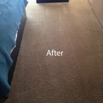ink stain removal Puyallup-B